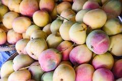 Mangomarknad - jordbruk f?r jordbruksprodukter f?r ny mango f?r sk?rd ny organiskt i den till salu sommaren arkivfoton