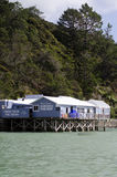 Mangonui fish and chips shop - New Zealand Royalty Free Stock Photo