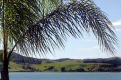 Mangonui hamn - Nya Zeeland Royaltyfria Bilder