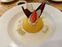 Mangopudding stock afbeelding