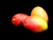 Mangos Stock Photos