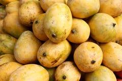 Mangos Fotos de archivo libres de regalías