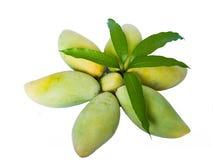 Mangos Lizenzfreie Stockbilder