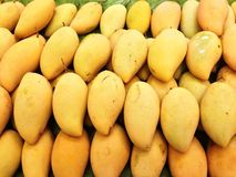 Mangos. Ripe mangos arranged in a stack Stock Images