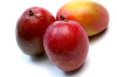 Mangos Imagen de archivo