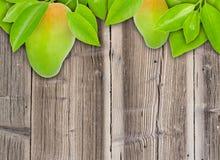 Mangos Royalty Free Stock Photography