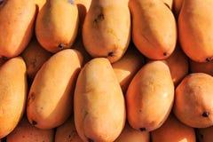 Mangos background Stock Photos