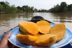 Mangos en el río de Makong fotografía de archivo libre de regalías