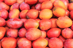 Mangos fruit Stock Photo