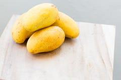 Mangos harvest Royalty Free Stock Photography
