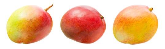 Mangos isolated. Three mangos isolated on white Royalty Free Stock Image
