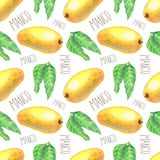 Mangos with leaves pattern vector illustration