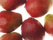Mangos machten und frisch nass Lizenzfreies Stockbild