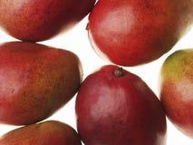 Mangos machten und frisch nass Stockfotos