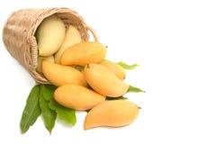 Mangos maduros frescos con las hojas verdes Foto de archivo libre de regalías