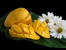 Mangos rebanados en la hoja Foto de archivo libre de regalías