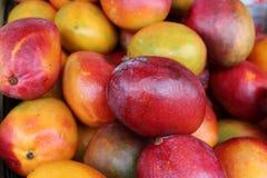 Mangos rojos y verdes en el mercado Imagen de archivo libre de regalías