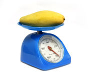 Mangos on scales Stock Image