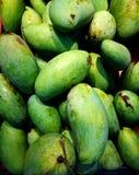 Mangos verdes recientemente escogidos Los mangos son frutas tropicales bien conocidas y se utilizan a veces en cocinar Fotos de archivo libres de regalías