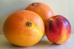 Mangos y nectarina Foto de archivo libre de regalías