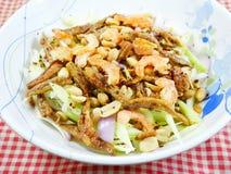 Mangosallad - thailändsk mat royaltyfria bilder