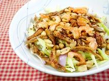 Mangosallad - thailändsk mat royaltyfria foton