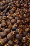 Mangostán Fotos de archivo