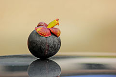 Mangostán Fotos de archivo libres de regalías