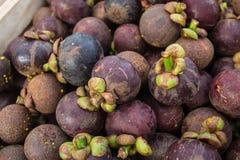 Mangostán de Tailandia imagen de archivo