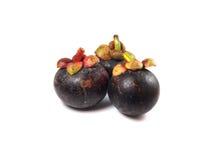 Mangostán - mangostán de las frutas tropicales en el fondo blanco Foto de archivo libre de regalías
