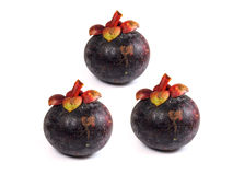 Mangostán - mangostán de las frutas tropicales en el fondo blanco Fotos de archivo