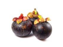 Mangostán - mangostán de las frutas tropicales en el fondo blanco Imagenes de archivo
