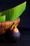 Mangostán, reina de frutas Fotografía de archivo libre de regalías