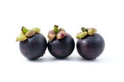Mangostan de koningin van Thais tropisch fruit Royalty-vrije Stock Afbeeldingen