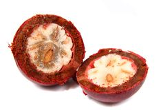 Mangostan fruit Royalty Free Stock Photography