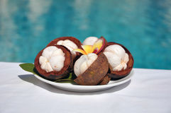 Mangostan (garcyni mangostana) Fotografia Stock