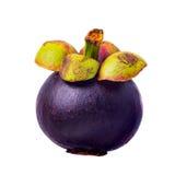 Mangostan, królowa owoc Obraz Stock