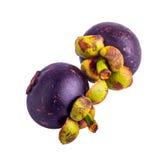 Mangostan, królowa owoc Zdjęcie Royalty Free