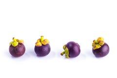 Mangostan, królowa owoc Obrazy Stock