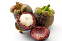 Mangostan królowa owoc Tajlandia obrazy stock