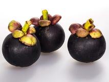 Mangostan owoc Fotografia Stock