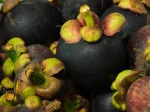 Mangostan owoc Zdjęcie Royalty Free