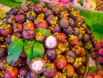 Mangostan owoc sprzedają na rynku w Tajlandia Ciała królowa friuts, Wyśmienicie mangostan owoc układali na pucharze obrazy stock