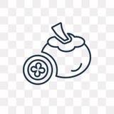 Mangostan wektorowa ikona odizolowywająca na przejrzystym tle, linea royalty ilustracja