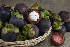 Mangostanes púrpuras en una cesta de la rota Imagen de archivo
