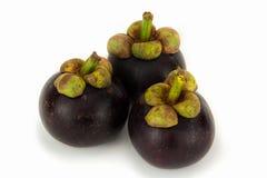 Mangostanfrüchte frisch Stockbild