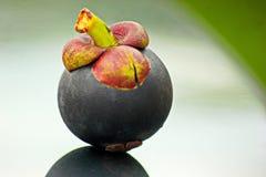 Mangostanfrucht lizenzfreie stockfotos