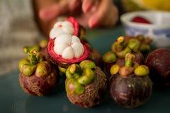 Mangostanfrucht auf einer Tabelle Lizenzfreies Stockbild