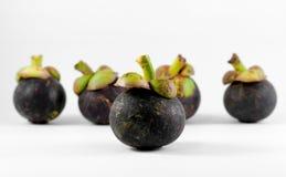 Mangostanfrucht auf weißem Hintergrund Stockbild