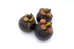 Mangostanfrucht auf weißem Hintergrund, Mangostanfruchtisolierung Lizenzfreie Stockbilder